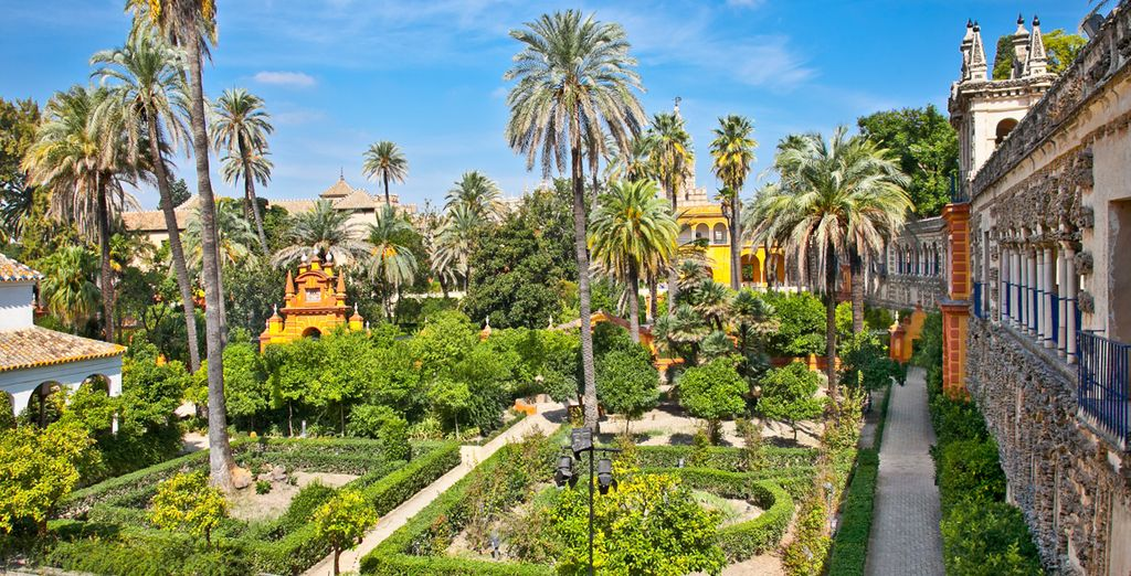 In the heart of Andalusia ...