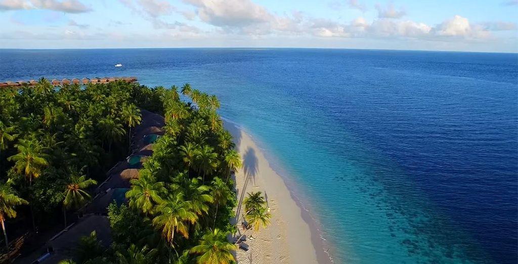 Or on the pristine beach