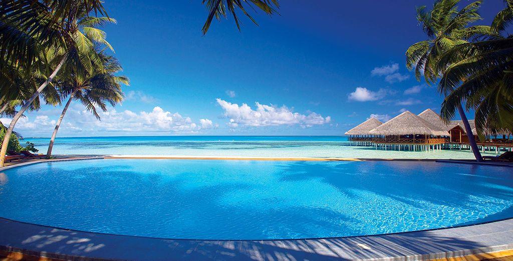 Where endless ocean views welcome you...