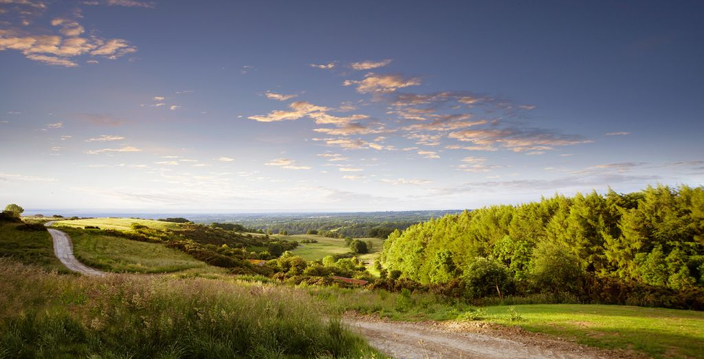 Head out and explore the endless country roads