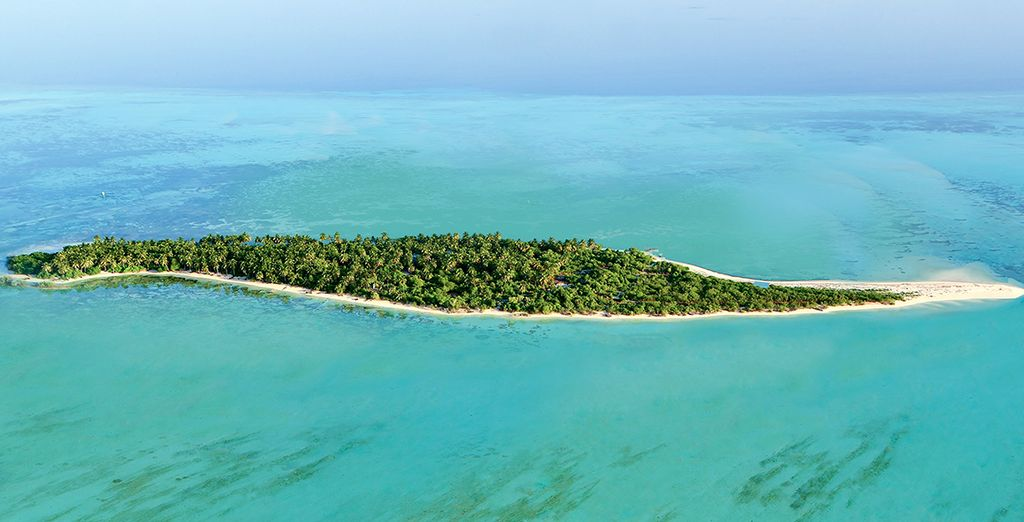 Next, escape to an unexplored island paradise...