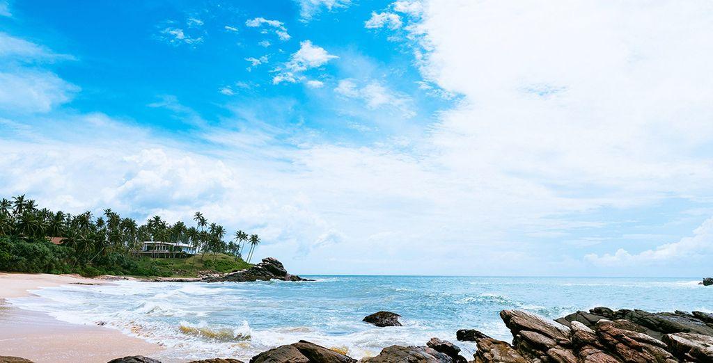 Admire the stunning coastline