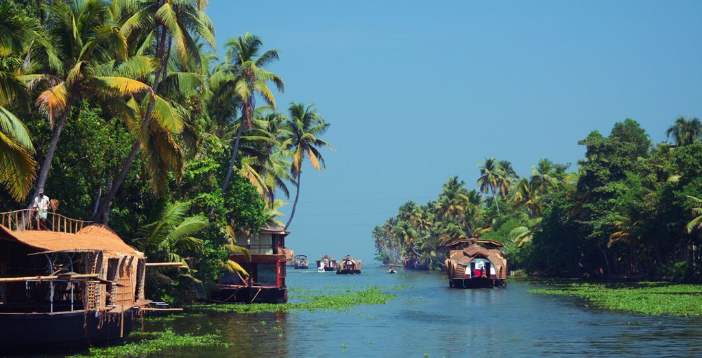 Discover the true essence of India with a tour of Kerala