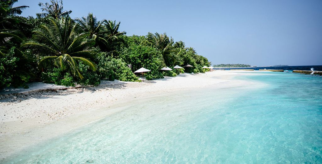 To the beautiful beaches of the Maldives
