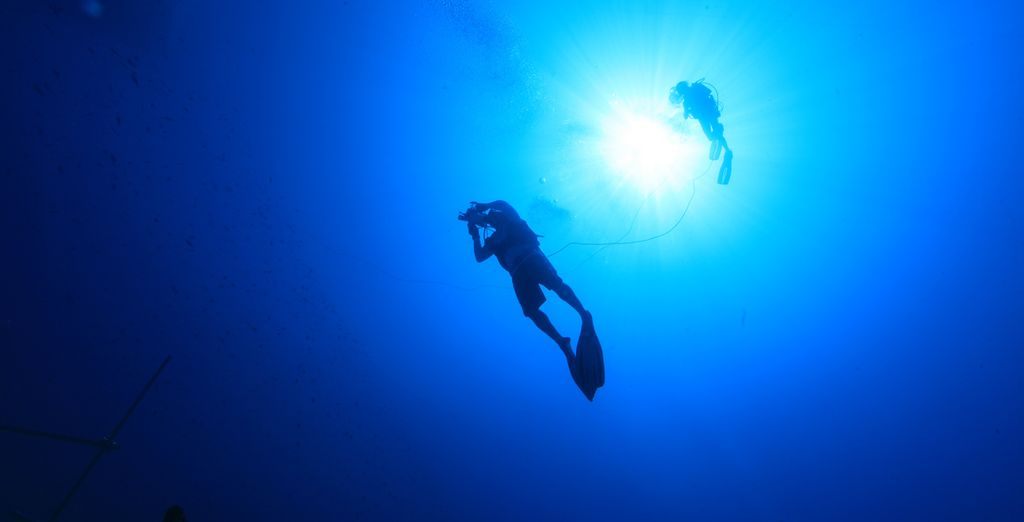 Go scuba diving and head to the bottom of the ocean