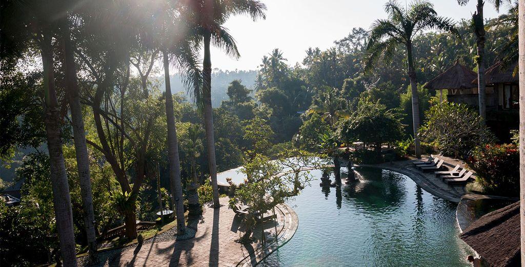 Take a dip in the main pool, admiring amazing views...