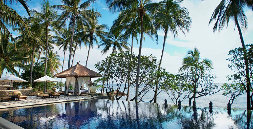 Visit this paradise location