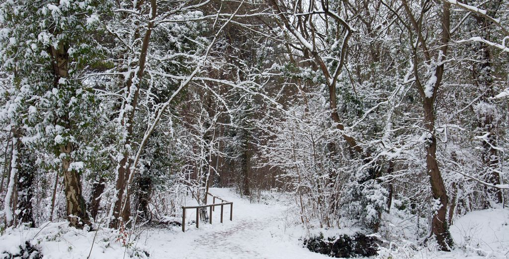 And if you choose to travel in winter you will find that Herefordshire is beautiful
