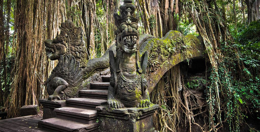 Discover the mysterious Ubud Monkey Forst in Bali