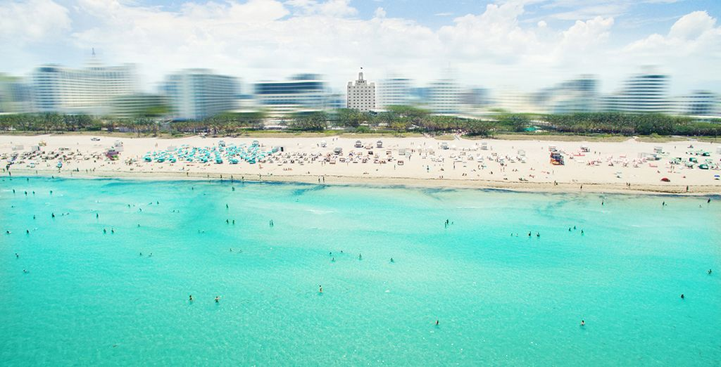 Set in the buzzing heart of Miami's South Beach
