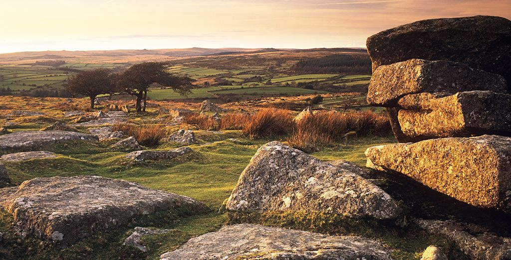 On the edge of Dartmoor National Park