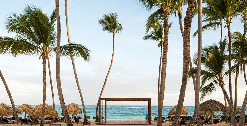 Hideaway at Royalton Punta Cana 5*