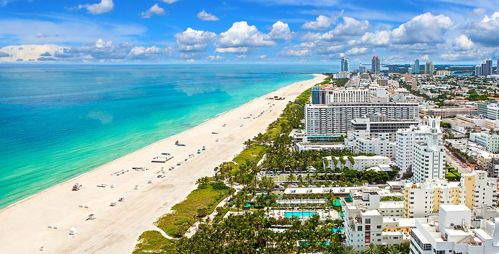 Florida Family Fly Drive Great Deals