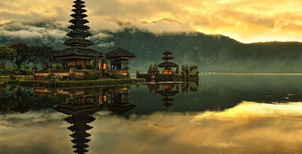 In beautiful Bali