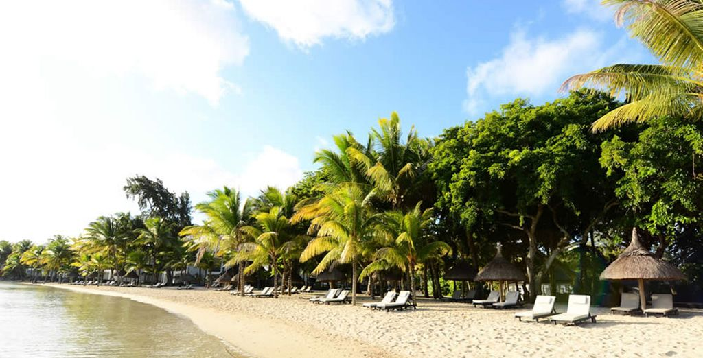 Escape to an idyllic beach paradise