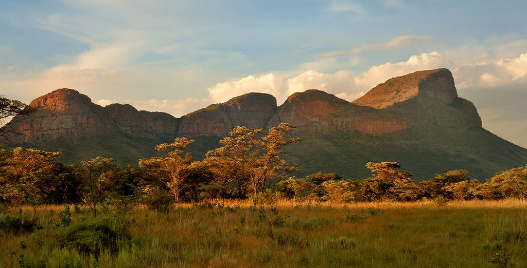 Beginning in South Africa's Entabeni Game Reserve