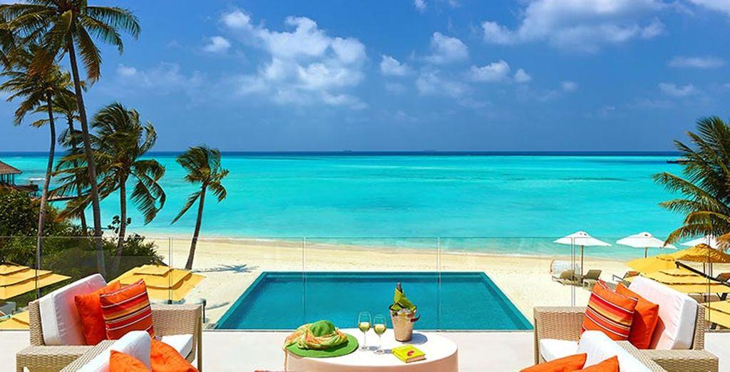 Enjoy poolside cocktails