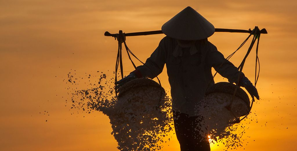 Delve into the beauty of Vietnam on this amazing tour
