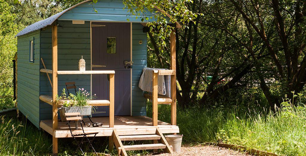 Bramble Shepherd's Hut