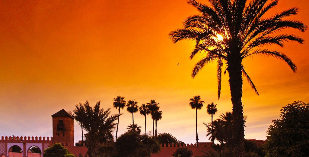 Take a tour of the great south - Marrakech and Sahara Desert Tour Morocco Various