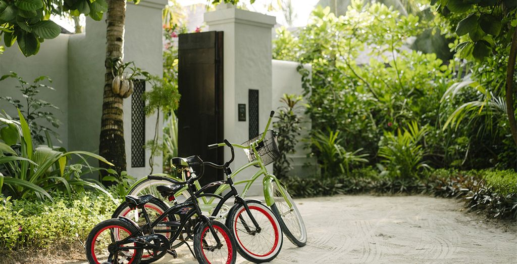Hop on a bicycle to explore the island