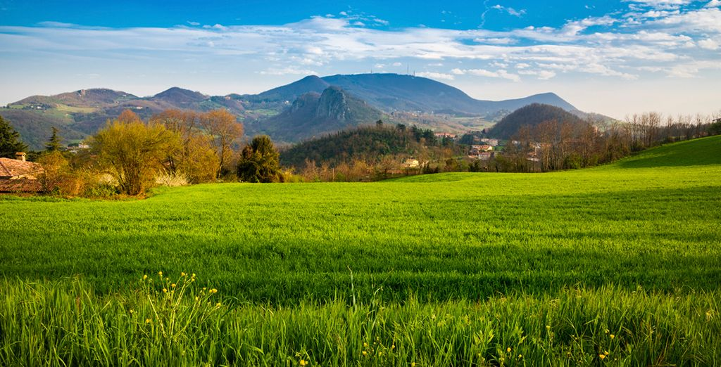 Admire the Euganean hills