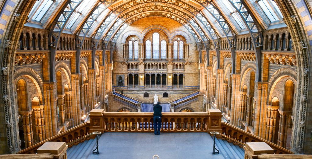 And the fascinating Natural History Museum – a joy for all who visit