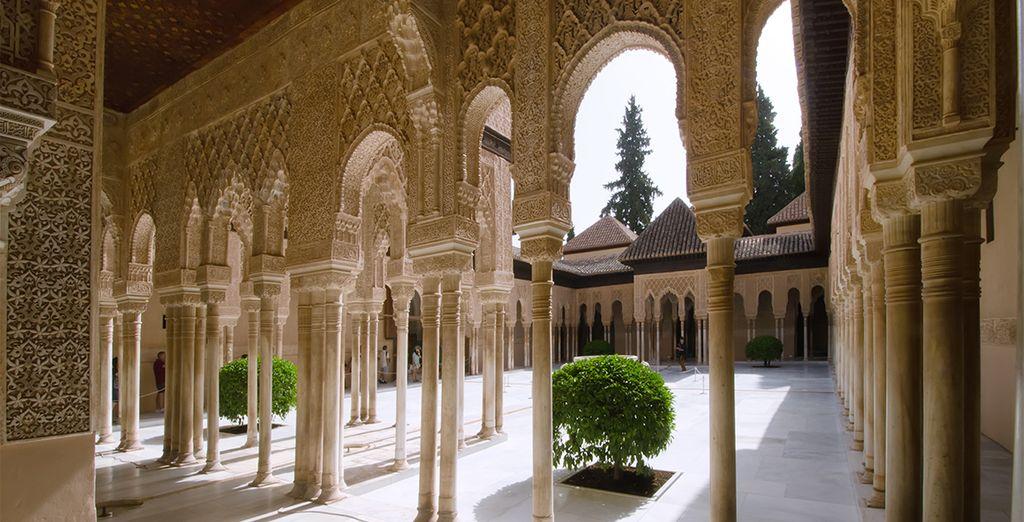 Found all over Granada