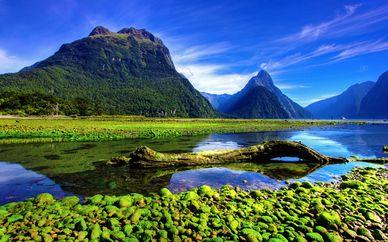 Autotour en Nouvelle-Zélande