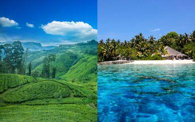 Découverte du Sri Lanka et extension 5* aux Maldives