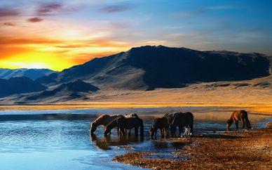 Circuit Mongolie Authentique en 12 jours / 10 nuits