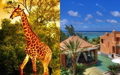 Combiné Luxe en Lodge Safari en Afrique du Sud et séjour balnéaire à l'île Maurice