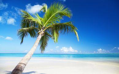 Playa Esmeralda Resort 4*
