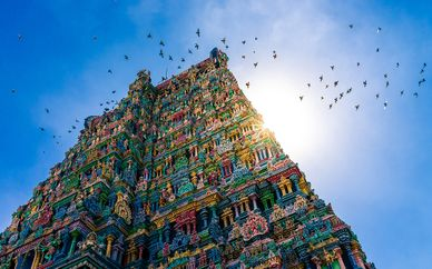 Tour India del Sud