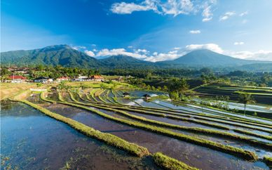 Simply Bali Private Tour 4* & 5*