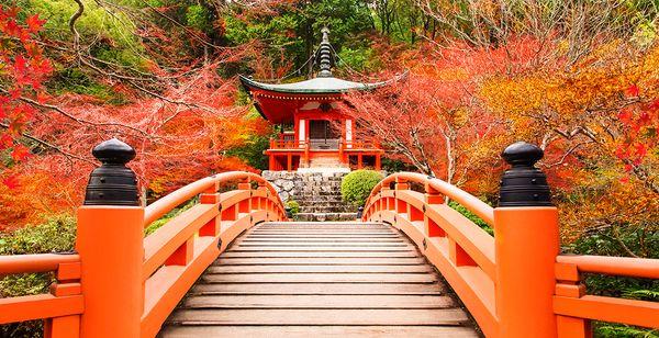 Circuit découverte du Japon avec ou sans guide - 10 ou 12 nuits