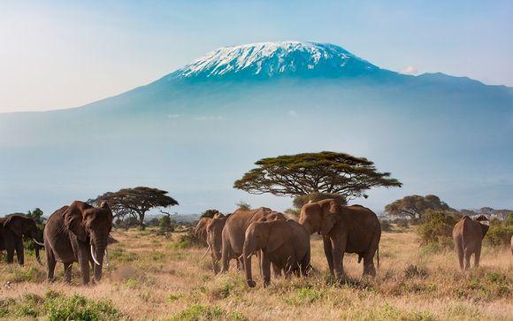 Uw inbegrepen safari