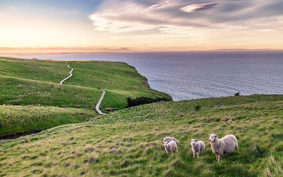 Willkommen in... Neuseeland!