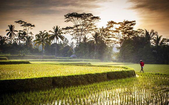 Willkommen auf...Indonesien !