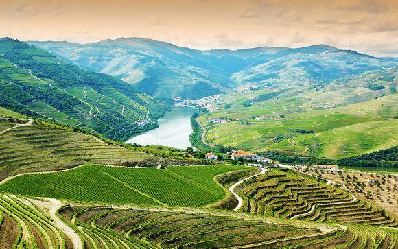 Willkommen im... Douro-Tal !