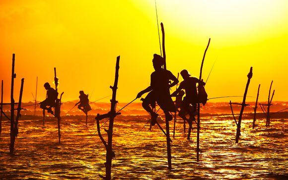 Willkommen auf...Sri Lanka!
