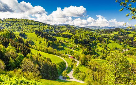Willkommen im... Schwarzwald!