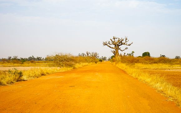 Willkommen im... Senegal!