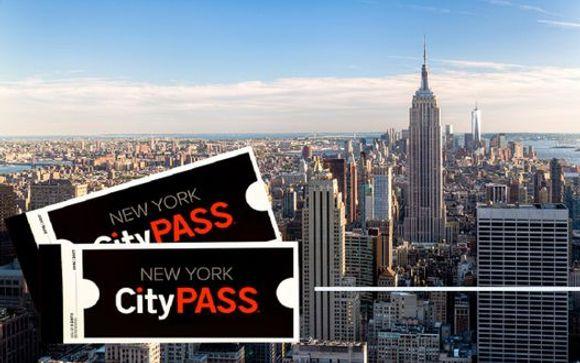 Ihre Optionen in New York