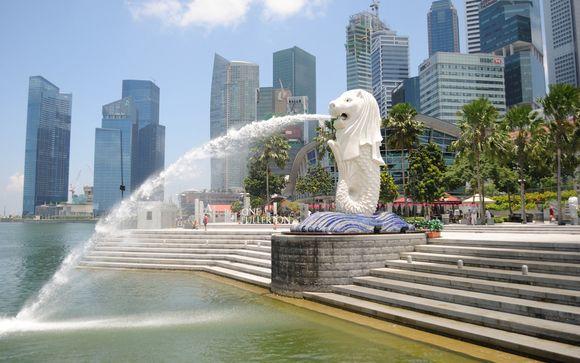 Ihre Optionen in Singapur