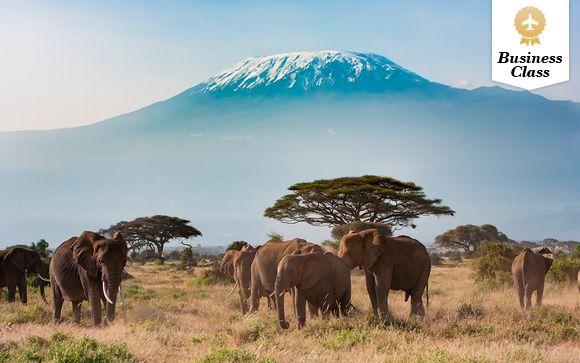 Kenia Nairobi - Kenia, Memorias de África desde 4.040,00 €