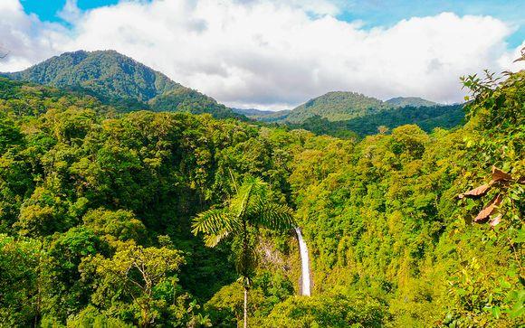 Costa Rica San José - Experiencia en el bosque lluvioso desde 2.043,00 €