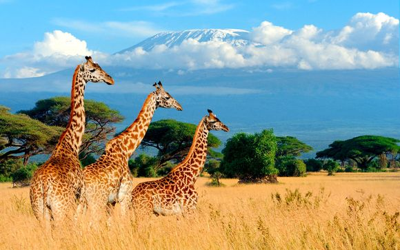 Kenia Diani Beach - Baobab Beach Resort 4* y Safari desde 1.213,00 €