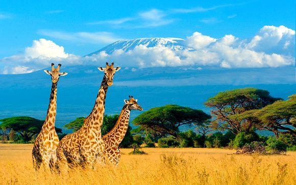 Tranquilidad y aguas turquesas con safari
