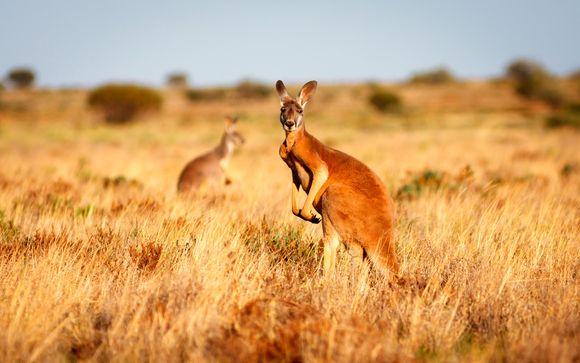 Descubriendo Australia
